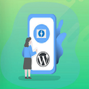 Buy AMP WP Plugins Subscription - BizSolution